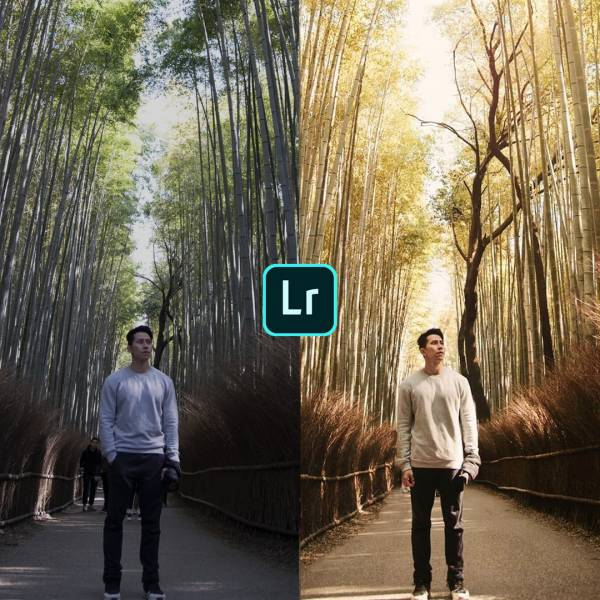 Learn The Basic Of Lightroom Editing For Social Media And