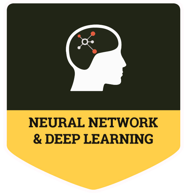 Learn All About Neural Networks & Deep Learning (Livestream)