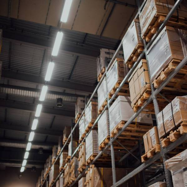 Learn How To Adapt To Changes in Warehouse Management During COVID-19 Pandemic