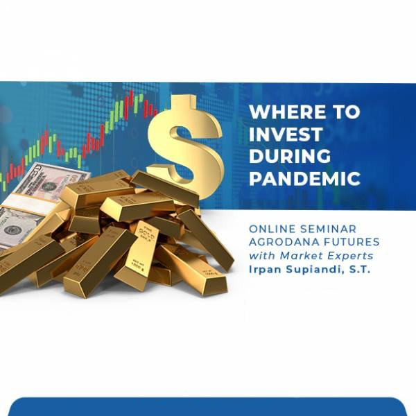 Learn Where to Invest During Pandemic