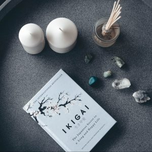 Learn the Road to Ikigai Vol.2